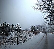 Winter Road by teresa731
