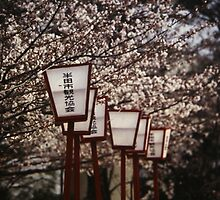Japanese Street Lights by DaniSpinks
