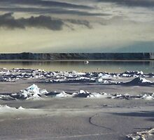 Iceberg in the Ross Sea at Night by Carole-Anne