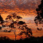 Tweed River Sunset by aussiebushstick