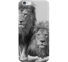 Male Lions (Black and White) iPhone Case/Skin