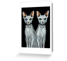 Duality - Sphynx Cat Art Greeting Card