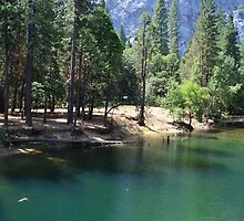 Gorgeous landscape picture of Yosemite National Park. by naturematters
