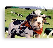 """Cow Dog"" - An English Bulldog wants to be a Cow Dog. Canvas Print"