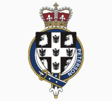Coat of arms (family crest) for last-name or surname Peterson (Scotland) . Heraldry banner for your name. by rita24