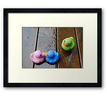 Three's a Crowd... Framed Print