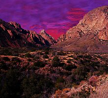 Big Bend Sunset by StonePics