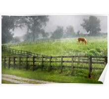 Horse in the Rain Poster