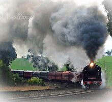 Snowtrain - Melbourne to Gippsland, August 2015 by Bev Pascoe