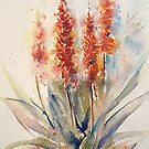 Watercolours From Africa 2010 by Debbie Schiff