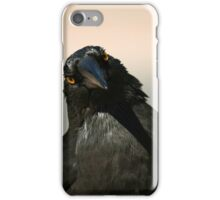 Curious Currawong iPhone Case/Skin