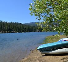 Boat, lake, trees and blue sky. by naturematters