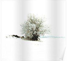 White As Snow ! Poster