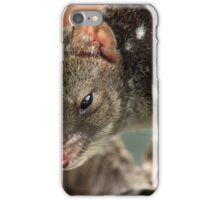 Spotted Tail Quoll (Juveniles) iPhone Case/Skin