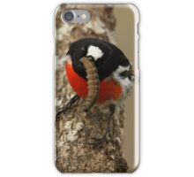 Scarlet Robin with Grub iPhone Case/Skin