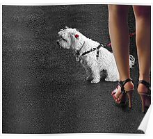 dogged attention Poster