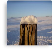 Post With Snow Canvas Print