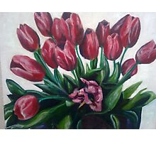 Tulips for Eve Photographic Print