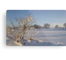 Winter Scene Dalmeny Metal Print