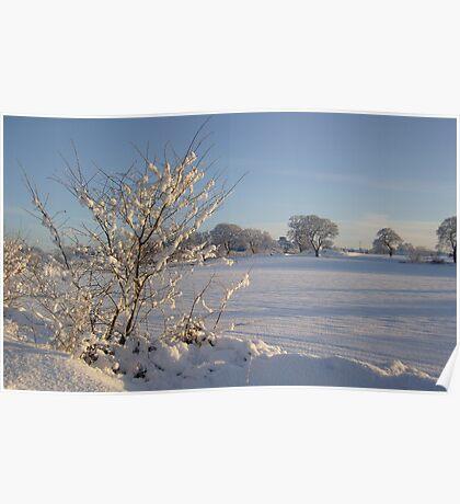 Winter Scene Dalmeny Poster