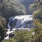 Fumiko Falls by James  Yu