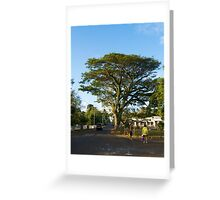 When nature makes you feel small - Tonga Greeting Card