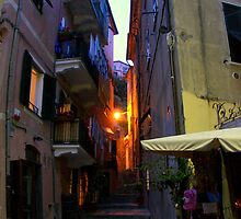 Monterosso Alley by Camilla