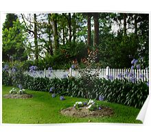 A Picket Fence with Agapanthus (Lily of the Nile)! Poster