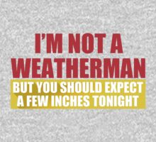 Im Not A Weatherman T-Shirt