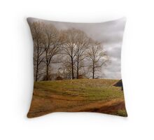 At The End of The Season Throw Pillow