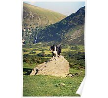 Young Indy at Aber Falls Poster
