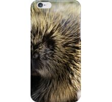 Cool Porcupine iPhone Case/Skin