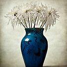 Blue by Barbara  Corvino
