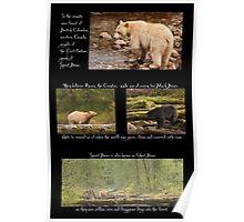 Legend of the Spirit Bear Poster