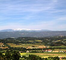 Landscape from Lacoste, France by Peggy Berger