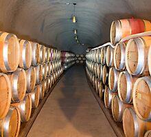 Wine Barrels Portrait by emmanuelchue