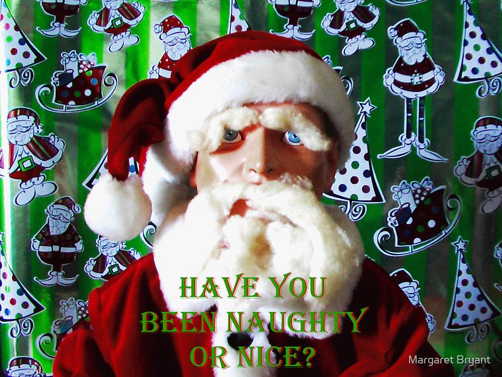 Hugo Christmas-- Naughty or Nice? by Margaret Bryant