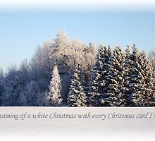 White Christmas card # 1 by Ritva Ikonen