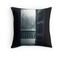 8.12.2010: Dark Winter Day Throw Pillow