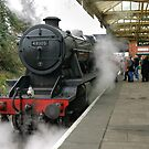 8F at Loughborough, UK. by David A. L. Davies