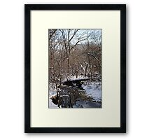 The Unofficial Bridge Framed Print