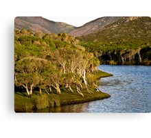 tidal riverscape 3 Canvas Print