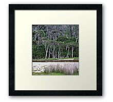 tidal riverscape 2 Framed Print