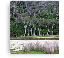 tidal riverscape 2 Canvas Print