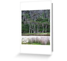 tidal riverscape 2 Greeting Card