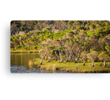 tidal riverscape Canvas Print