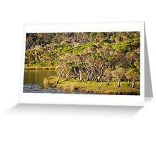 tidal riverscape Greeting Card