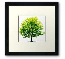 Tree Save the Planet Framed Print