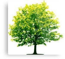 Tree Save the Planet Metal Print