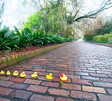 """Duck Crossing"" - Rubber ducks cross road by John Hartung"